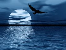 Blue moon and bird. Abstraction night landscape.Moon reflection in sea Stock Photography