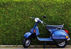 Blue Moped by Green Bush at Roadside Royalty Free Stock Images