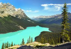 Beautiful Canadian Lake Rockies, Banff NP. Beautiful summer landscape scene with Canadian Rockies. High mountains and Peyto Lake in Banff National Park. Alberta royalty free stock image