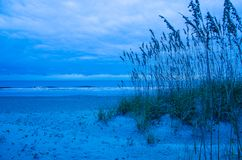 Blue Morning on Amelia Island. Early morning on a cloudy morning over sand dunes on Amelia Island, Florida stock image