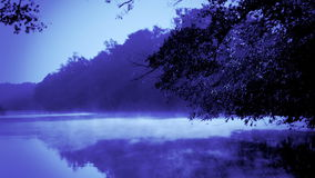 Blue morning fog on a calm river stock video
