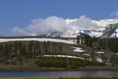 Blue morning skies at Yellowstone National Park Royalty Free Stock Photos