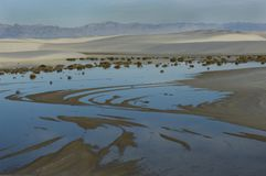 A blue morning sky reflects in rainwater pools in White Sands National Monument. royalty free stock photography