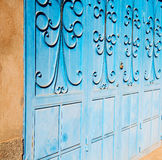 blue morocco old door and historical nail wood Royalty Free Stock Photography