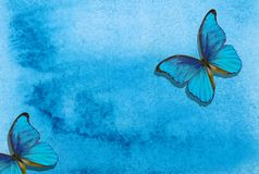 Blue morpho butterfly. Abstract blue watercolor background. Blue abstract background. Wet watercolor paper