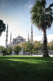 Blue Mosque. Istambul, Sultanahmed district Royalty Free Stock Photo