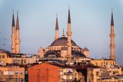 blue mosque Στοκ φωτογραφίες με δικαίωμα ελεύθερης χρήσης