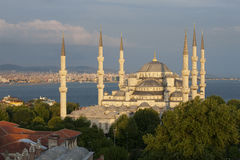 The Blue Mosque in the afternoon, Istanbul. Turkey. Elevated view of the Blue Mosque in the afternoon, Istanbul. Turkey Royalty Free Stock Photo