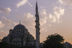 Blue mosque at dawn Royalty Free Stock Photos