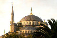 Blue Mosque  Dome and minaret Royalty Free Stock Images