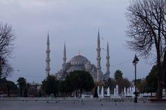 Blue Mosque at Dusk Stock Photos