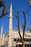 Blue Mosque royalty free stock images