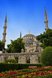 Blue Mosque, Istanbul. Blue Mosque, a major tourist destination in Istanbul, with flowers in the foreground Stock Images
