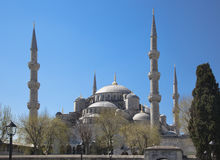 Blue Mosque in Istanbul spring day Stock Photos
