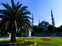 Blue Mosque in Istanbul Stock Photos