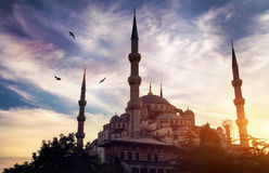 Blue mosque in Istanbul at sunset Royalty Free Stock Photography