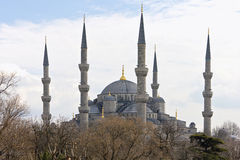 Blue Mosque in Istanbul, Turkey. The Blue Mosque in Istanbul, Turkey Stock Images