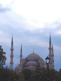 Blue Mosque, Istanbul, Turkey. The Blue Mosque in Istanbul, Turkey Royalty Free Stock Photography