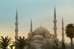 The Blue Mosque. Istanbul, Turkey Royalty Free Stock Photography