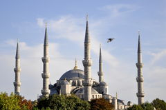The blue mosque, Istanbul Turkey. The view of blue mosque ,Istanbul Turkey royalty free stock photography