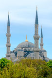 Blue Mosque in Istanbul. Turkey Royalty Free Stock Image