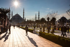 The Blue Mosque. In Late afternoon, Istanbul Royalty Free Stock Photos