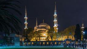 Blue Mosque on night timelapse view from lawn with palm in Istanbul. stock video