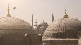 Blue Mosque from Santa Sofia stock video footage