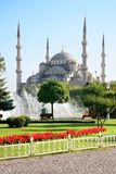 Blue Mosque in Spring Stock Photos