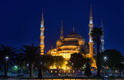 Blue mosque Sultan Ahmed Mosquein Istanbul Royalty Free Stock Images
