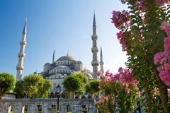 The Blue Mosque (Sultanahmet Camii) Royalty Free Stock Images