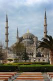 The Blue Mosque Sultanahmet Camii, Istanbul, Turkey.  Royalty Free Stock Photo