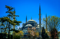 The Blue Mosque, (Sultanahmet Camii), Istanbul, Turkey. Royalty Free Stock Photography