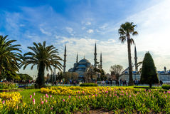 The Blue Mosque, (Sultanahmet Camii), Istanbul, Turkey. Royalty Free Stock Photo