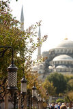 The Blue Mosque, Sultanahmet Camii nice view from the park, Istanbul, Turkey. The Blue Mosque, Sultanahmet Camii view from the park, Istanbul, Turkey Royalty Free Stock Photo