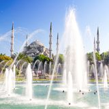 Blue Mosque in Summer Royalty Free Stock Photo