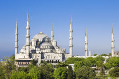 Blue mosque sunny day , Istanbul Royalty Free Stock Images