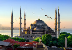 Blue Mosque at sunrise Stock Photography