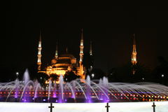 Blue Mosque. A Blue Mosque view in Instanbul, during night Royalty Free Stock Photos