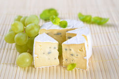 Blue mould cheese Royalty Free Stock Photos