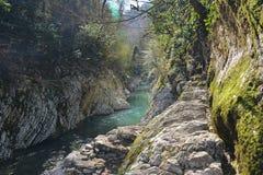 Blue mountain river stock image