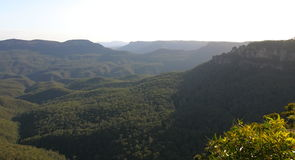 Blue mountains. Australia. Royalty Free Stock Photography