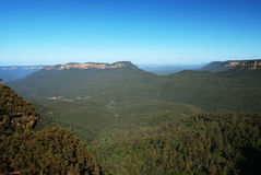 Blue mountains, Australia Royalty Free Stock Photography