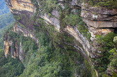 Blue Mountains, Australia Royalty Free Stock Photo