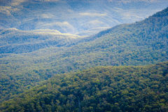 Blue Mountains - Australia Stock Photography