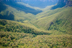 Blue Mountains - Australia Royalty Free Stock Photo
