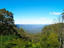 The blue mountains in Australia. Beautiful view in the blue mountains, Katoomba, Australia Royalty Free Stock Photo