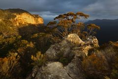 Blue Mountains Australia Royalty Free Stock Photos