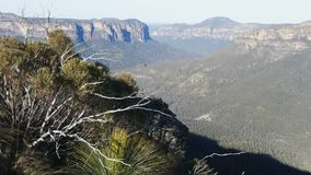 Blue mountains australia. A view down into the grose valley in the blue mountains, australia stock video footage