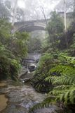 Blue Mountains Bridge in Mist Royalty Free Stock Image